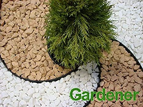 Gardener - Rollo de Papel de Lija para jardín (3, 8 x 10 m), Color ...