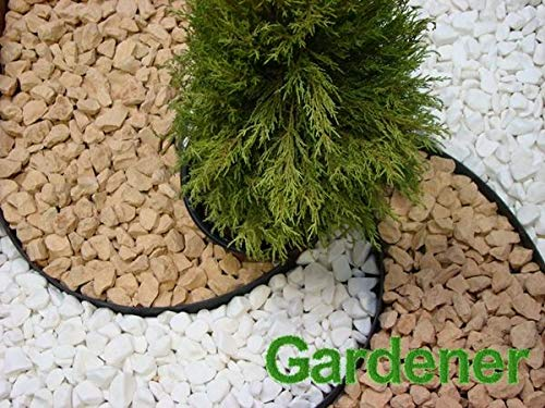 Decocraft Plastic Garden Grass Lawn Edge 10m 30 Pegs Flexible Edging Border 45mm Height