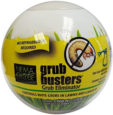 beneficial nematodes for grubs