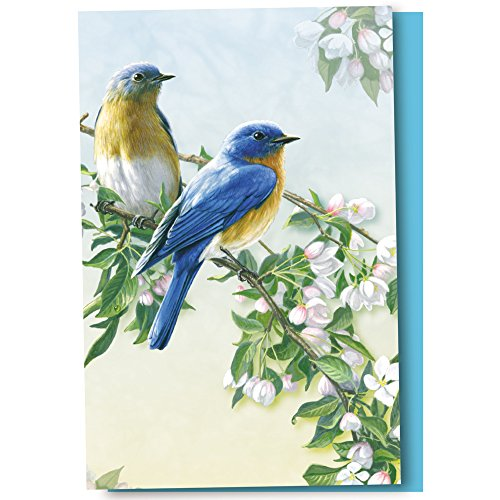 - Tree-Free Greetings EcoNotes 12-Count Bluebird Branch Blank Notecard Set With Envelopes, All Occasion, For Bird and Flower Lovers (FS56947)