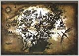 Dark Souls II Authentic Cloth Game Map