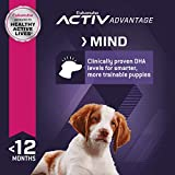 Eukanuba Puppy Lamb 1st Ingredient Dry Dog Food, 15
