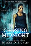 Chasing Midnight (Dark of Night Book 2)