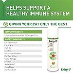 Vetoquinol Enisyl-F Oral Paste: L-Lysine Supplement for Cats - Tuna Flavor, 3.4oz (100mL) Pump 9