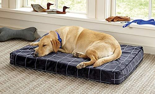Orvis Toughchew Memory Foam Platform Dog Bed/Medium Dogs 40-60 Lbs, Charcoal, Medium