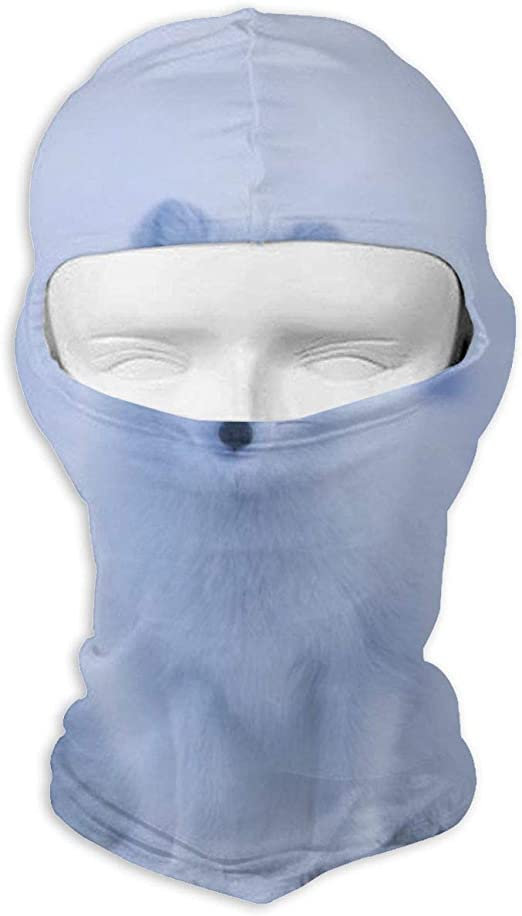 Wind-Resistant Face Mask/& Neck Gaiter,Balaclava Ski Masks,Breathable Tactical Hood,Windproof Face Warmer for Running,Motorcycling,Hiking-Mid Century Geometric