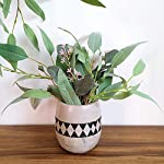 Supla-2-Pack-Faux-Seeded-Eucalyptus-Long-Leaves-Greenery-Bouquets-Long-Leaves-Grey-Green-Atificial-Eucalyptus-Plants-Spray-with-Fruit-Pods-for-Greenery-Wedding-Bride-Baby-Shower-Woodland-Floral-Decor