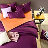 4 Pieces Reversible Down Alternative Comforter Sets Twin,Bedsheet,Duvet Cover,Pillowcase (Twin Size, Cream/Pink)
