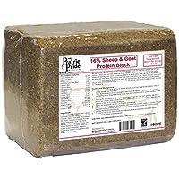 RIDLEY 16826 33LB Sheep/Goat Block