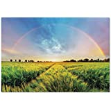 Large Wall Mural Sticker [ Farm House Decor,Rainbow in Sky over Wheat Field at Sunset Natural Paradise Rural Life Illustration,Green Yellow ] Self-adhesive Vinyl Wallpaper / Removable Modern Decoratin
