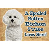 A SPOILED ROTTEN BICHON FRISE LIVES HERE! - REALISTIC 9X6 HIGH QUALITY HARDBOARD PET DOG SIGN PLAQUE - THIS NOVELTY PET SIGN SHOULD BE USED INDOORS. OUR NOVELTY PET SIGNS MAKE EXCELLENT GIFTS!