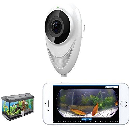 fishkam-aquarium-wireless-remote-monitoring-camera-720p-hd-fisheye-180-fish-tank-monitor-android-iph