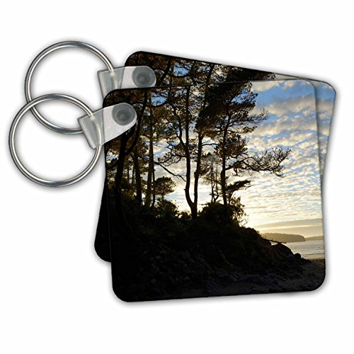 Tofino Chain (Danita Delimont - Canada - Canada, Vancouver Island. Gnarled trees at sunset, Tonquin Beach - Key Chains - set of 2 Key Chains)