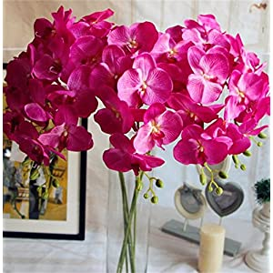 jiumengya 5pcs Fuchsia Color Silk Phalaenopsis Butterfly Moth Orchid 8 Flower Heads Orchids for Wedding Decorative Artificial Flowers 30
