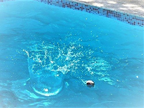 JA-RU Pro Water Hopper Skip it Bouncing Ball (Pack of 72 Units) Bounce & Skips | Item #880-72 by JA-RU (Image #4)