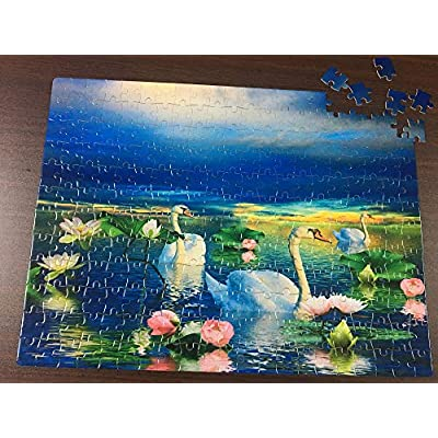 Personalized Asia Map with Animal in Cartoon Style Puzzles Rectangle Jigsaw Puzzle with Funny Picture Art for Adults Children Wedding Anniversary Birthday A3 Size 252 Pieces: Toys & Games