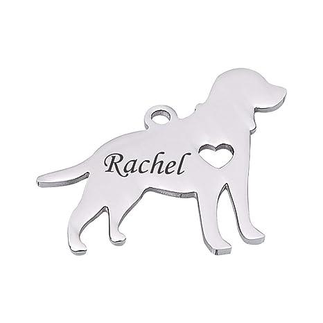 QX-Pet Supplies Etiquetas de identificación para Perro de ...