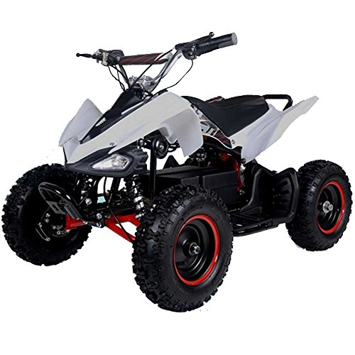 FamilyGoKarts Sport 500W Kids Electric ATV Quad w/3 speed settings plus reverse!...
