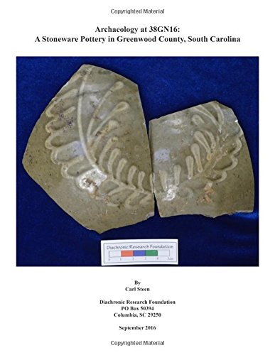Download Archaeology at 38GN16 pdf epub