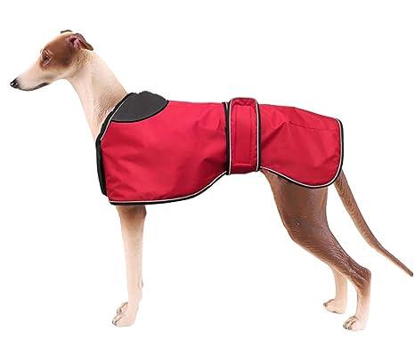 Morezi - Chaqueta Impermeable para Perro, Abrigo de Invierno con Forro Polar cálido, Ropa