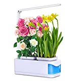 Hydroponic Lights Indoor, Indoor Hydroponics Herb Growing System Automatically Adjust Brightness Desk Lamp for Reading, Smart Garden Kit with 2 Gardening Pots for Plant (Seeds not Include)