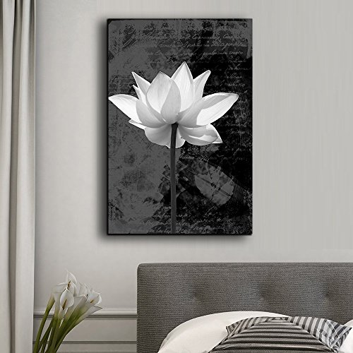 Peering onto a Water Lily in Black and White