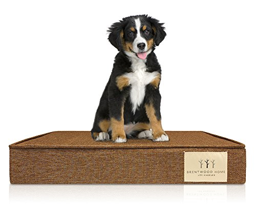 Brentwood Top - Brentwood Home Griffith Pet Bed, Orthopedic Gel Memory Foam, Made in California, Bronze, Medium