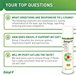 Vetoquinol Enisyl-F Oral Paste: L-Lysine Supplement for Cats - Tuna Flavor, 3.4oz (100mL) Pump 14