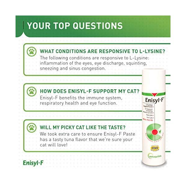 Vetoquinol Enisyl-F Oral Paste: L-Lysine Supplement for Cats - Tuna Flavor, 3.4oz (100mL) Pump 7