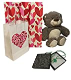 Valentines Day Gifts for Girls Set, 14 Inch Plush Teddy Bear, Cute Glass Pendant Necklace, Gift Bags & Cards – The Best Valentine's Day Gifts for Girlfriend, Mom, Sister, Wife, Daughter (Medium Green)