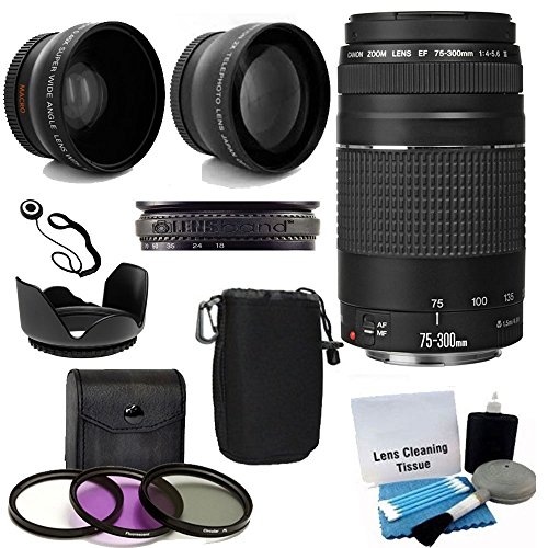 Canon EF 75-300mm f/4-5.6 III Telephoto Zoom Lens with 2X Telephoto Lens, HD Wide Angle Lens and Accessories (8 Piece Kit) (Best Zoom Lens For Sports)