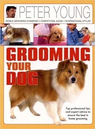 Grooming Your Dog Top Professional Tips And Expert Advice To Ensure