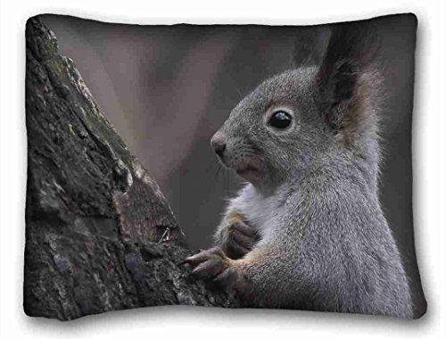 """Custom Characteristic ( Animals trunk tree ) Pillow Covers Bedding Accessories Size 20""""X26"""" suitable for X-Long Twin-bed"""