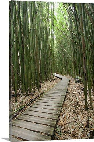 Jenna Szerlag Premium Thick-Wrap Canvas Wall Art Print entitled Hawaii, Maui, Kipahulu, Haleakala National Park, Bamboo Forest On The Pipiwai Trail - Pipiwai Trail