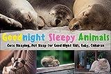 Goodnight Sleepy Animals: Cute Sleeping, Pet Sleep for Good Night Kids, Baby, Children
