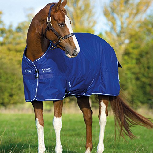 Amigo Hero 6 Turnout - Pony Medium Weight - Size:66 Color:Atlantic Blue/Ivory (Pony Turnout Sheet)