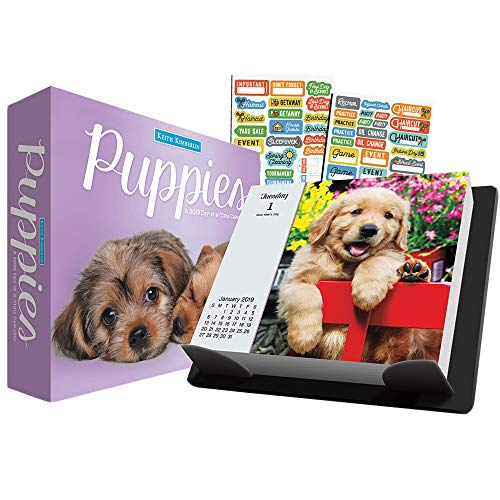 (Keith Kimberlin Puppies 2019 Calendar, Box Edition Set - Deluxe 2019 Keith Kimberlin Puppies Day-at-a-Time Calendar with Over 100 Calendar Stickers (Keith Kimberlin Puppies Gifts, Office Supplies))