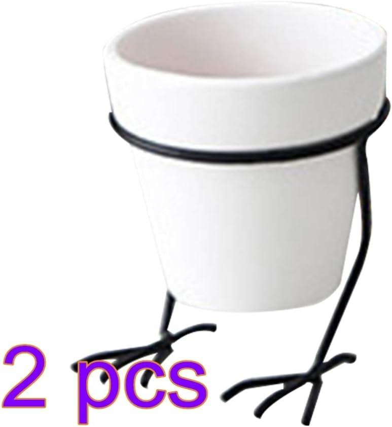 Yardwe 2pcs Maceta Creativa con Soporte de Hierro Patas de Pollo Soporte Maceta suculentas Maceta - m (Blanco)