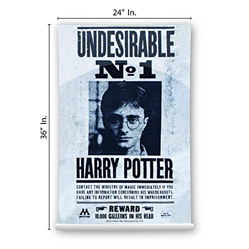 Mc Sid Razz Harry Potter - Undesirable No 1 Maxi poster | Wa