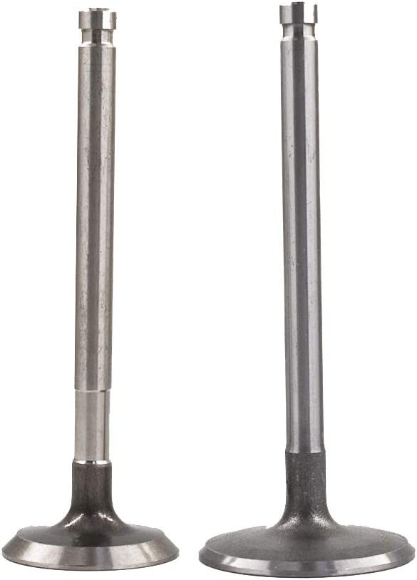 labwork-parts Intake Exhaust Valves Fit for 81-95 Toyota Celica Pickup 4Runner 22R 22RE 22REC