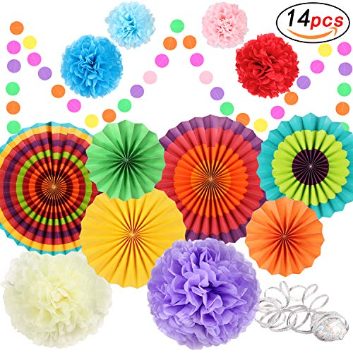 Fiesta Party Decorations Party Supplies Hanging Paper Fans Pom Poms Tissue Paper Flower for Birthday Party Wedding Festival Christmas Decoration, Mexican Cinco De Mayo Decorations - Colorful by Will Well