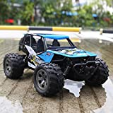 FitMaker RC Car, All Terrain Remote Control High-Speed Telecar, Offroad 2.4Ghz 2WD Remote Control Monster Truck Kids Adults (Updated Version)