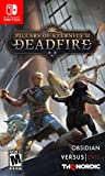 Video Games : Pillars of Eternity II: Deadfire - Nintendo Switch
