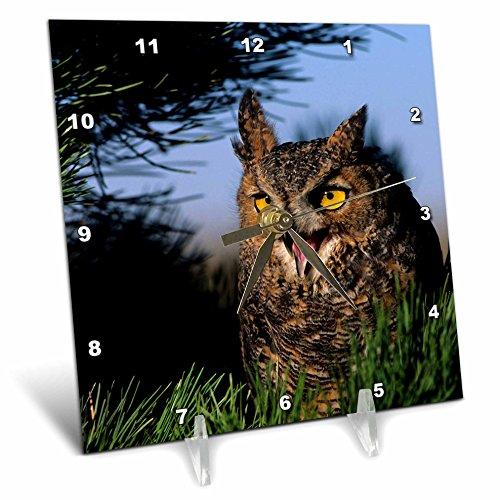 Hooting Owl Clock - 4