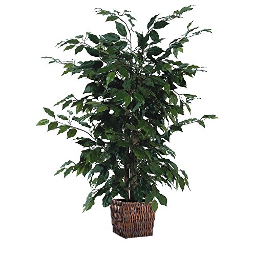 Vickerman 4' Artificial Ficus in Square Willow Container - Square Plant Containers