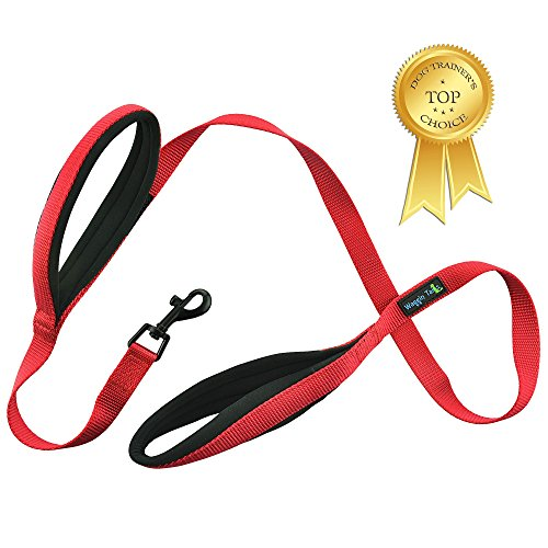 (Waggin Tails Soft and Thick Double Handle Premium Nylon 4FT x 3/4Inch Dog Leash - Dual Soft Padded Handles for Ultimate Control - Classic Comfort for Medium to Large Dogs (Carnation Red))