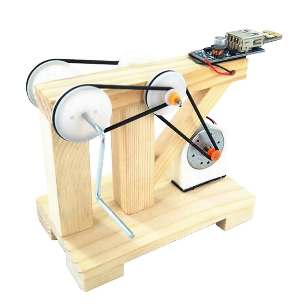 Perfeclan DIY Hand Generator Gl/ühbirne Modellbau Wissenschaft Spielzeug Physikalisches Modell f/ür Kinder Geschenk