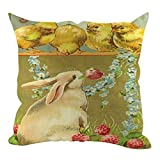 Amandaz Super Soft Easter Linen Square Rabbit Throw Pillow Case Waist Cushion Cover Home Decor- Wrinkle, Fade, Stain Resistant - Hypoallergenic (45cmX45cm, F)
