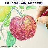 36 color set Metal Cased 157 371 Van Gogh colored pencils (japan import) by Sakura Color