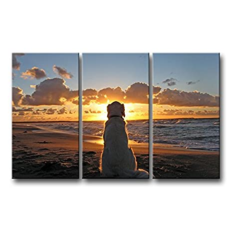 3 piece wall art painting dog watch in sunset pictures prints on canvas animal the picture